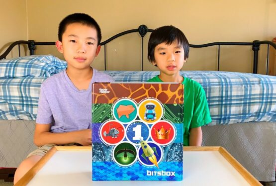 We review BitsBox, a monthly subscription box which teaches your kids to code their own apps. Save 15% with promo code STEM15 when you orderhere. BitsBox was a product that was featured on the TV show Shark Tank. BitsBox teaches coding because coding is about making stuff and making stuff is empowering and important. Coding […]